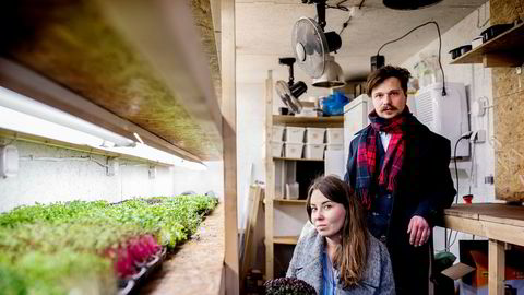 Ekteparet Kamil og Barbara Slowik fra Polen driver den lille bedriften Smågrønt. De to dyrker småplanter i fraktcontainere som de leverer til restauranter.