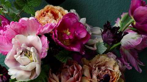Edelt forfall. Med de rette tulipanene i hagen er det lett å lage sitt eget renessansestilleben. Buketten inneholder blant annet tulipanene Sensual Touch, Copper Image, Black Parrot, Green Wave og Queen of Night.