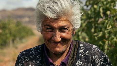 Innhøsting. – Blant den eldre garde i Armenia er det kun damene som kan jobbe, de er de flinkeste til å plukke druer. Mennene står bare og ser på, sier Zorik Gharibian