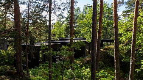 Smygende sommerhus. Hytta til Irene Sævik er diskret plassert blant trær og knauser ved Hallangspollen, inspirert av modernistiske ideer og japansk arkitektur.