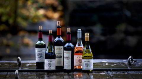Man ser sjelden vin fra Uruguay i Norge, men nå tilbyr vinprodusenten Garzón rødt, hvitt og rosé.